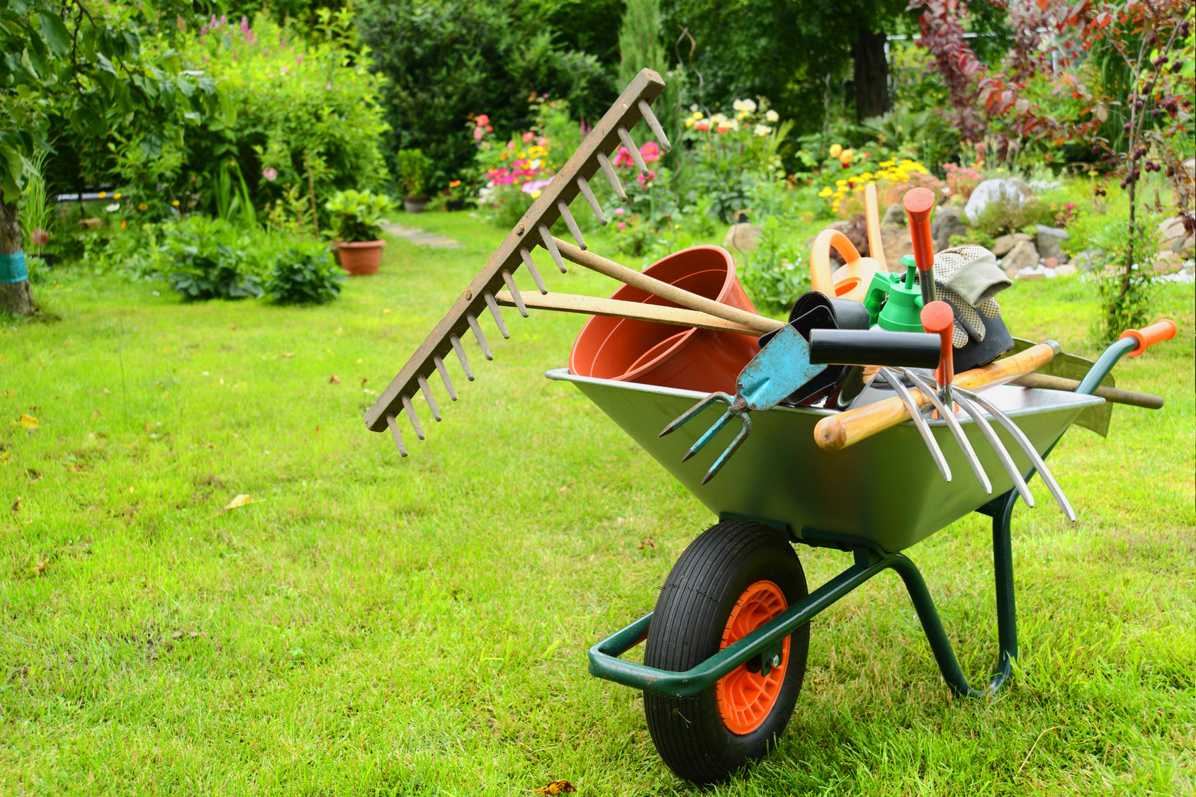 Entretien plante et d coration jardin univers d co - Entretien jardin locataire ...